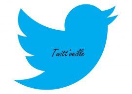 Twitt'Veille : dans la presse et sur le web – semaine du 16 mai 2016